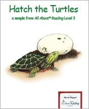 Hatch the Turtles