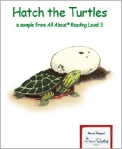 Hatch the Turtles